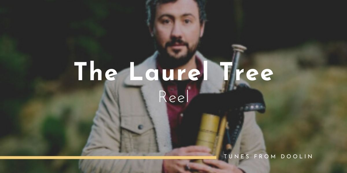 The Laurel Tree (Reel)   Tunes From Doolin   Irish Traditional Music