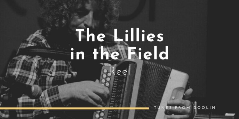 Lillies in the Field (Reel) | Tunes From Doolin | Irish Traditional Music