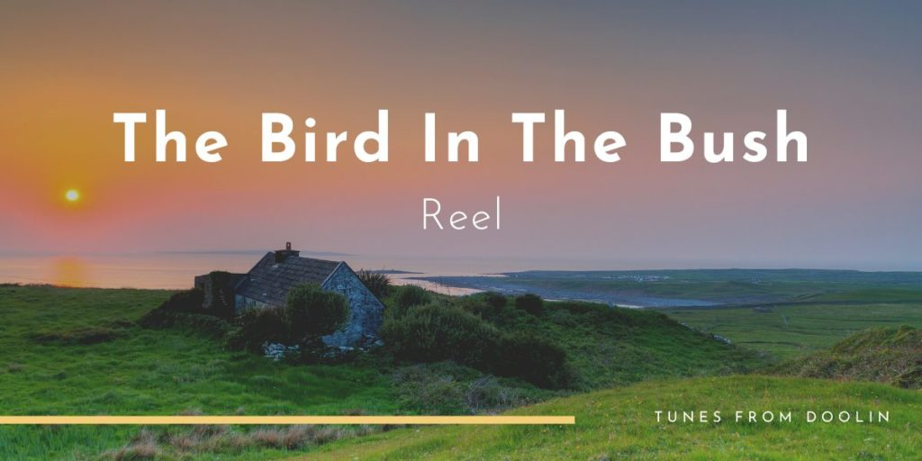 The Bird In The Bush | Tunes From Doolin | Irish Traditional Music