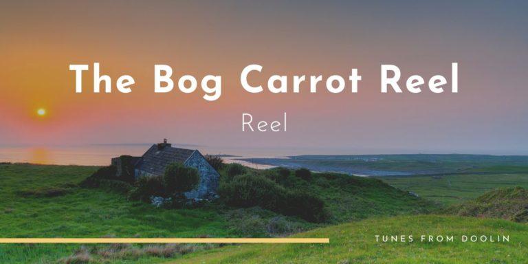 Bog Carrot Reel | Tunes From Doolin | Irish Traditional Music